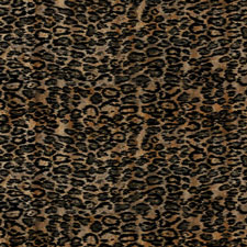 Leopardo | Natural