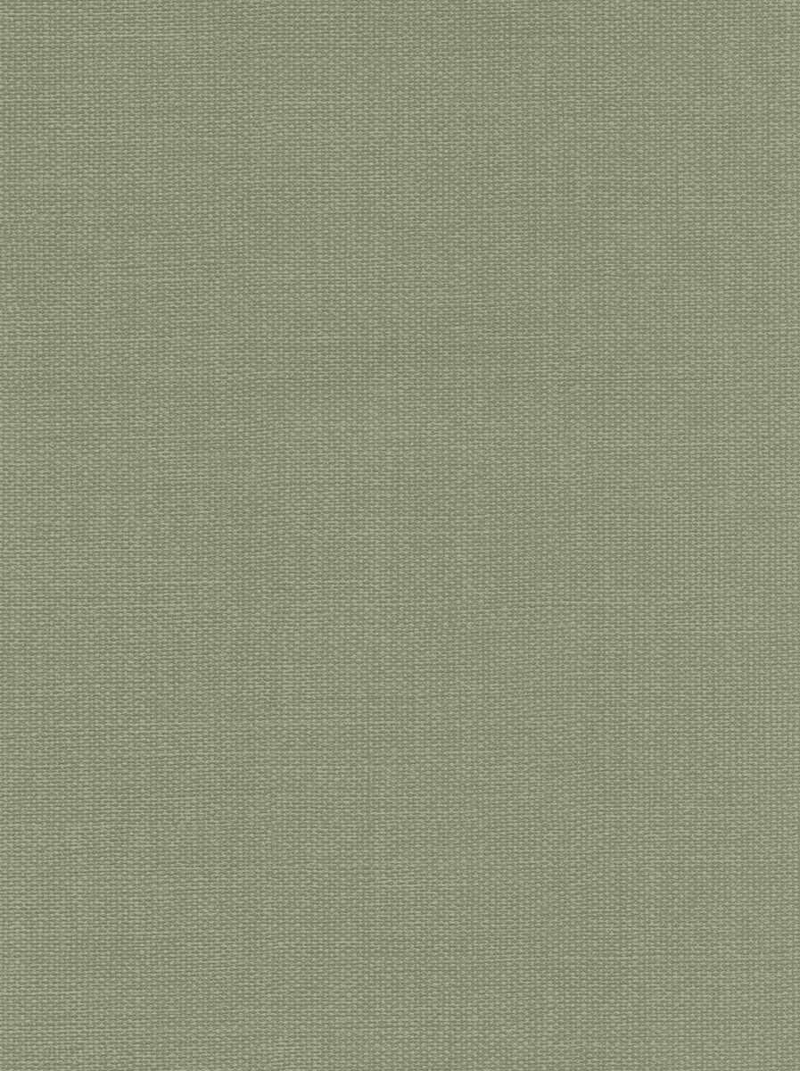 65034W Belmont Moss