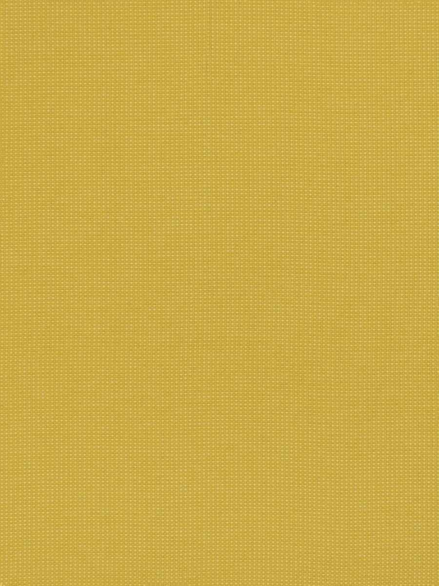 Inspire Goldenrod