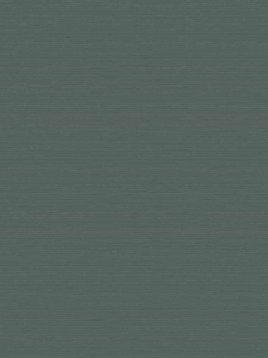 64026W Transcript EUCALYPTUS-09