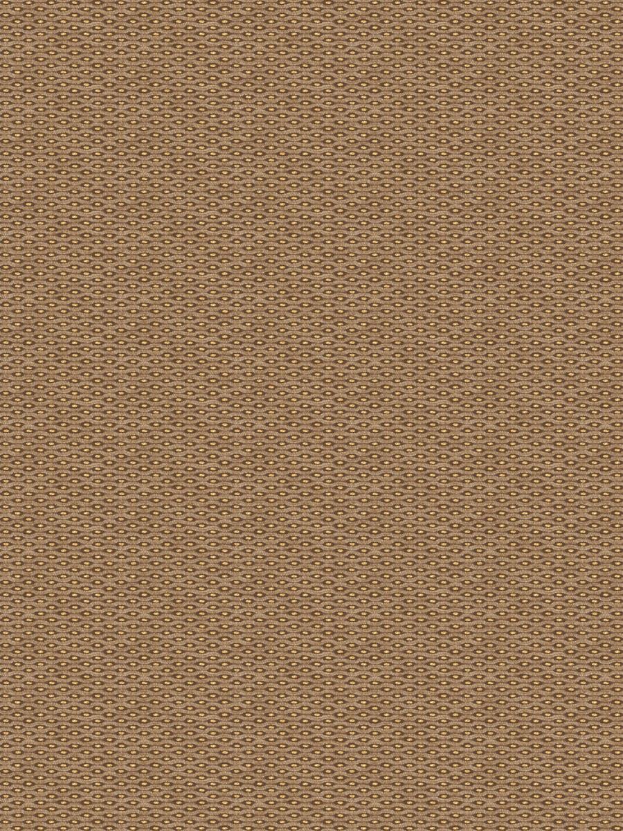Salinger Copper