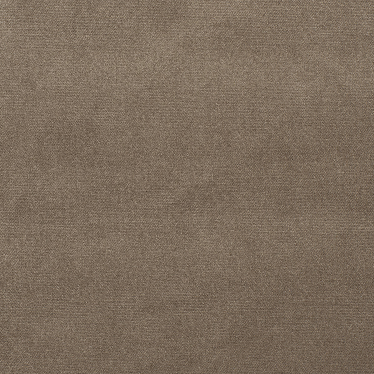 cbc0a7f849 Panache Velvet Stone | Fabric | Fabricut Contract