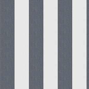 Ski Stripe Navy