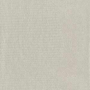 65047W Boa Birch