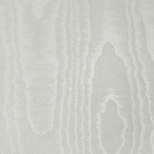 65007W Moire Seashell
