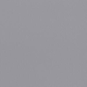 65044W Glacier Iris