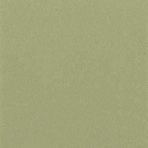 65052W Colour Index Sage