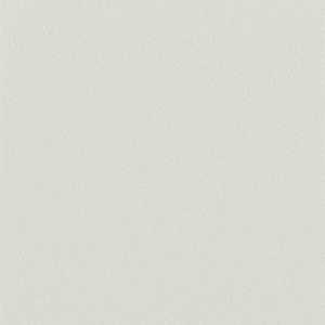 65052W Colour Index Paper White
