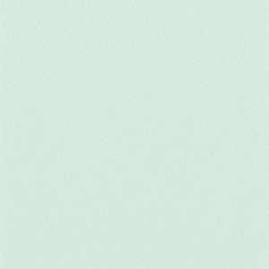 65052W Colour Index Wintergreen