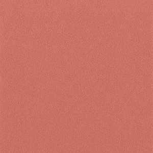 65052W Colour Index Coral