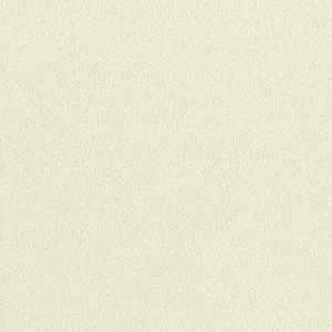 65052W Colour Index Basmati
