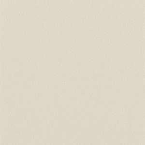 65052W Colour Index Sand Dollar