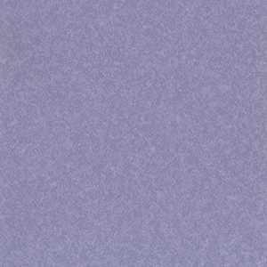 65073W Hyde Violet