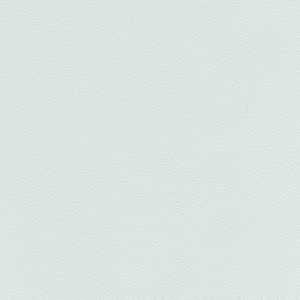 65078W Lambourn Frost