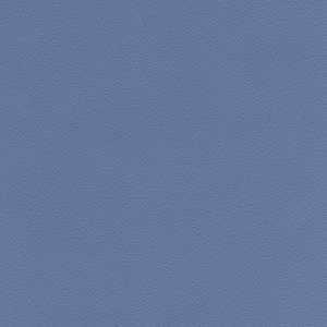 65078W Lambourn Delphinium