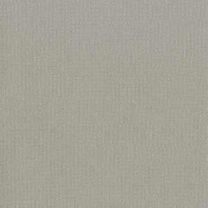 65084W Tallis Overcast