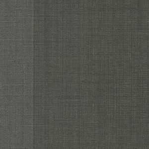 65081W Rohan Stripe Char
