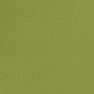 Fibreguard Suede Lime