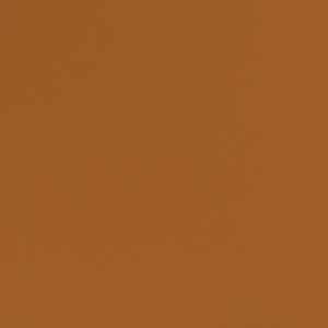 Rochester Kumquat