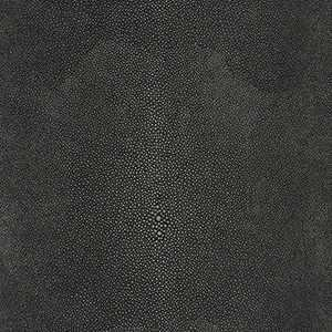 Shagreen Shadow