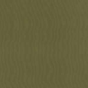 Aspen Spruce