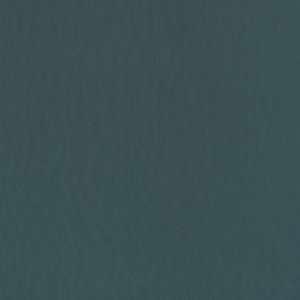 Aspen Ocean