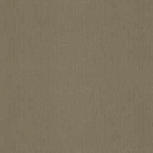 50304W Silage TAUPE-12