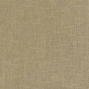 Spice Cotton Parchment