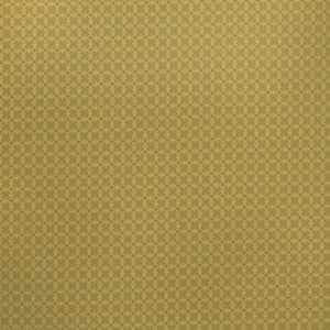 Labyrinth Kiwi