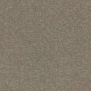 Sycamore Taupe