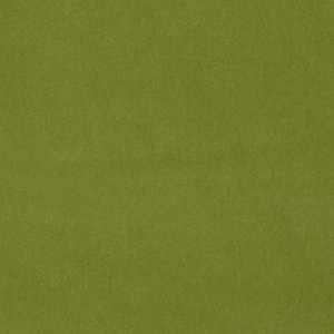 Velours Olympia Pea Green