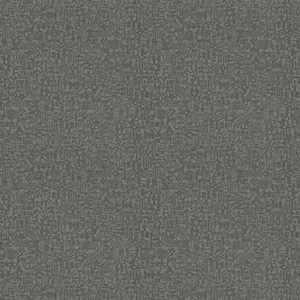 64028W Explorer GRAPHITE-05