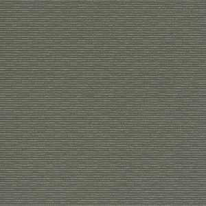 64029W Ancestry GRAPHITE-11