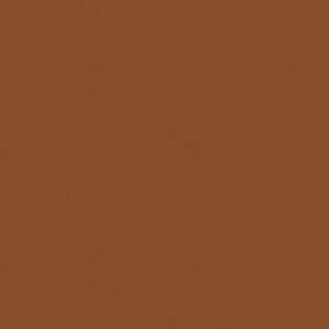 Parallel Blackout Copper Penny