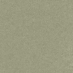 Denison Camouflage