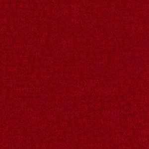 Denison Cardinal