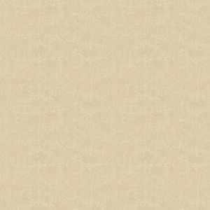 Surface Blackout Parchment