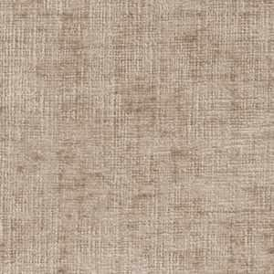 Option Taupe