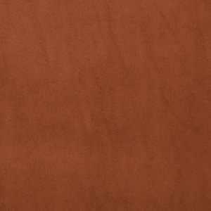 Signature Cinnamon