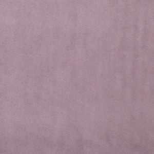 Signature Lilac