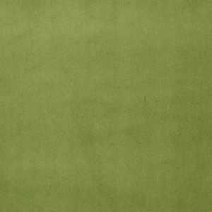 Signature Moss