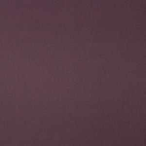 Luster Blackout Fig