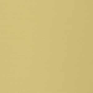 Vivid Blackout Soft Gold