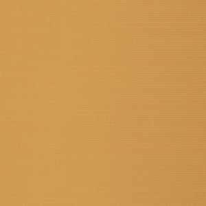 Vivid Blackout Goldenrod