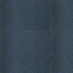 Digital Blue Jay