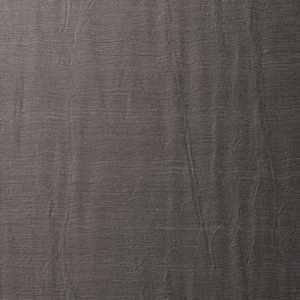 14009W Bajardo Fossil 01