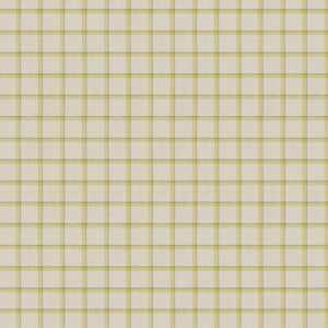 Campaign Plaid Citrine