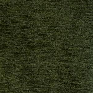 Aquarelle Elm