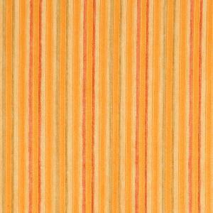 Prism Stripe Citrus