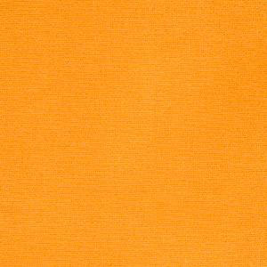 Elan Velvet Mango